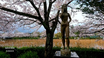 南濠の桜 ブロンズ 想い.jpg