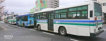 市内を走るバス.jpg