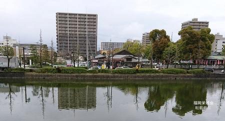 徴古館 周囲全景.jpg