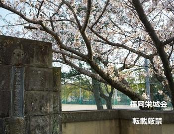 母校旧正門.jpg